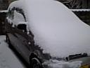 今年1番の雪